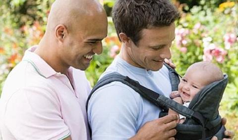 Gay same-sex parenting